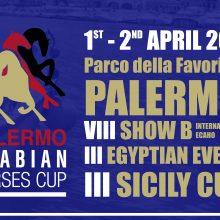 """""""Palermo Arabian Horses Cup"""", la razza più blasonata dell'ippica si da appuntamento al Parco della Favorita"""