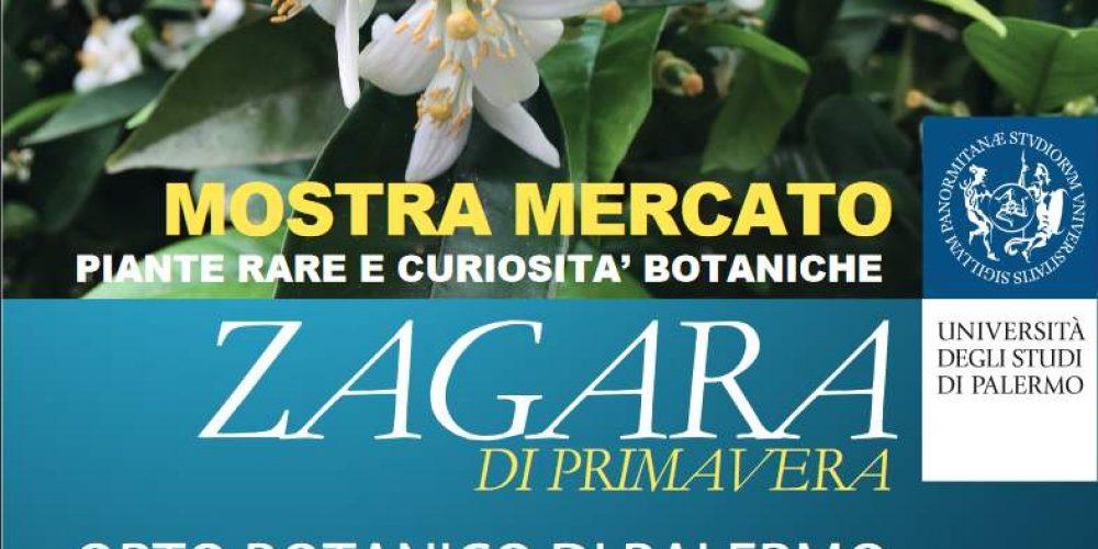 All'Orto Botanico la 14esima edizione de La Zagara di Primavera