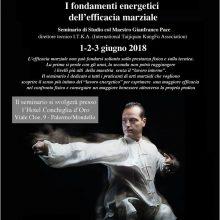 Seminario di Taiji Quan con il M. Gianfranco Pace: terzo appuntamento per noi!